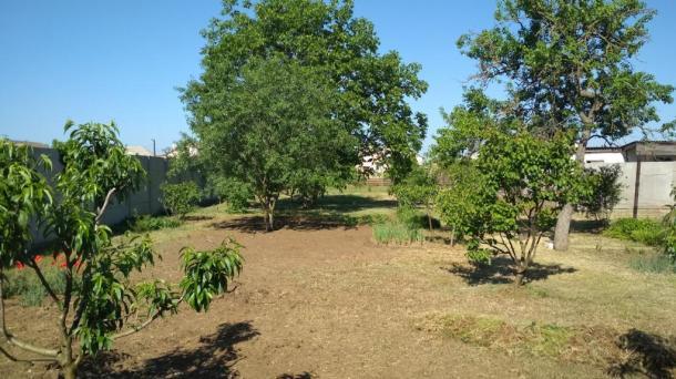Дом 58 кв. м. на земельном участке 19 соток в селе Ромашкино